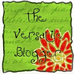 awards-versatile-blogger-april-2014